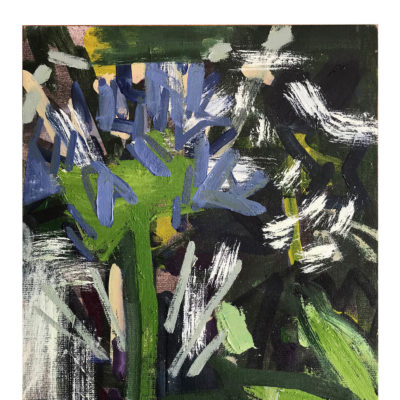 Virginia Bounds - Agapanthus II
