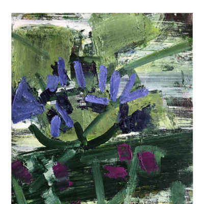 Virginia Bounds - Agapanthus III