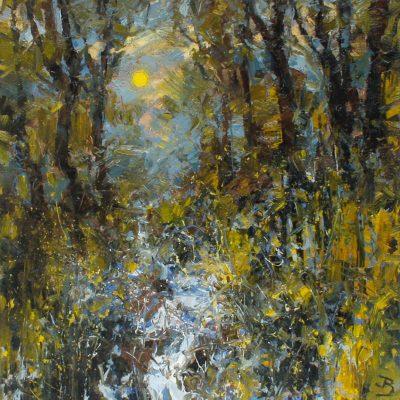 Woodland Stream, Twilight
